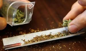 Cigarette, pétard ou joint de cannabis bio