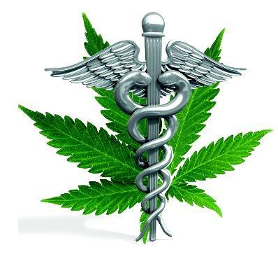 La plupart des chercheurs s'intéressent à des composantes spécifiques du cannabis biologique, nommées cannabinoïdes.